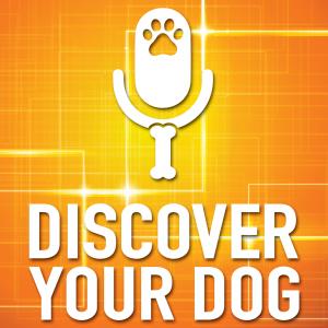DiscoverYourDog Show Artwork