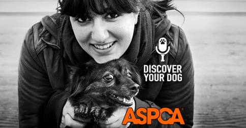 Discover Your Dog Episode 26 Preventing Cruelty to Dogs (...and other animals, too!)