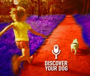 Ep 028 The Do's and Don'ts of Child Interaction with a Dog