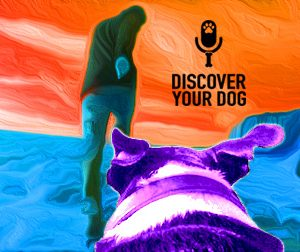 Ep 053 From Your Dog's Perspective