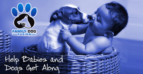 Babies and Dogs Picture