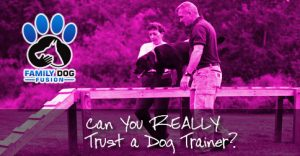 Can You Really Trust a Dog Trainer?