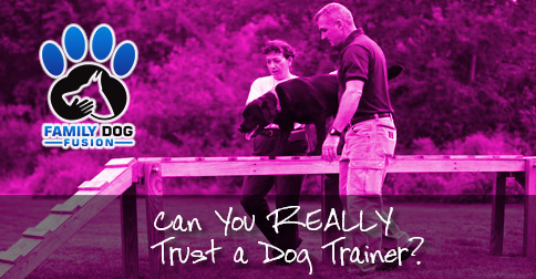 Can You Really Trust a Dog Trainer image