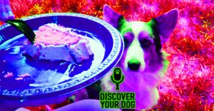 Ep 083 Change Your Dog's Begging Ways