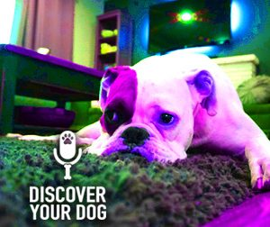 Ep 087 Is Your Family Sabotaging Your Dog Training?