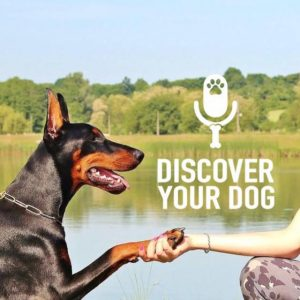 Episode 140: Are You Treating Your Dog Like a Human?