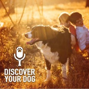 Ep 156 Kids-n-Dogs, Part 3: The Homework