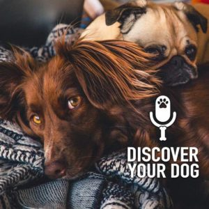 Ep 164 Your Dog's Need to Lean on You