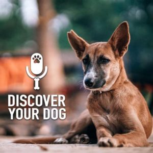 Ep 170 – 2018 Dog Lover's Quick Reference Guide