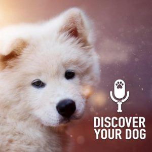 Ep 172 The Untrained Dog, Part 1: Your Friend's Bad Dog!