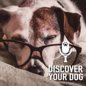 43b0f8d5d Discover Your Dog