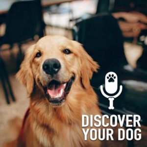 Ep 199 Interview: Linda Gregg (Therapy Dogs)